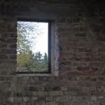 Fenster_9405_B_Web